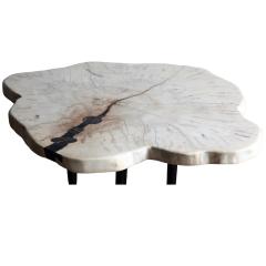 Ian Love Design Ambrosia Maple Coffee Table - 1498573