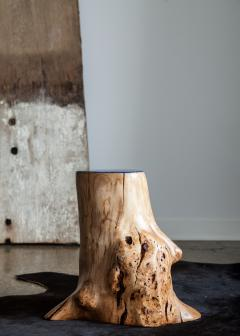 Ian Love Design Cherry Blossom Burl Stool With Resin And Acrylic Top - 1504129