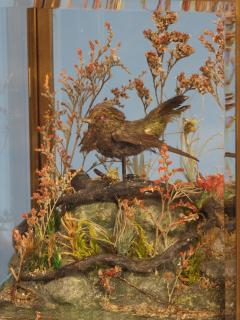 Japy Freres c 1870 Rare Automated Singing Bird Carriage Clock - 1276585