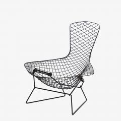 Knoll Early Bertoia Bird Chair in Outdoor Grade Powdercoat by Harry Bertoia for Knoll - 2054741