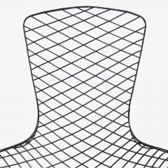 Knoll Early Bertoia Bird Chair in Outdoor Grade Powdercoat by Harry Bertoia for Knoll - 2054746