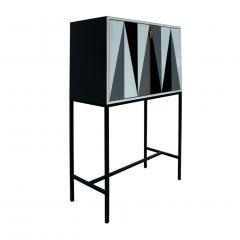 L A Studio L A Studio Modern Solid Wood and Colored Glass Italian Cabinet - 955622