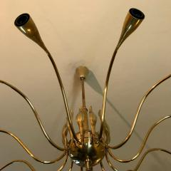 Lumi 12 Arms Ceiling Light in brass - 1390525