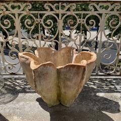 Oak Design Studios AGAVE Terracotta garden pots with natural patina - 2099246