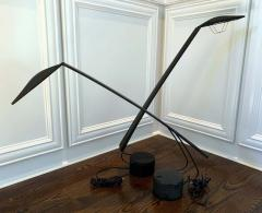 PAF Studio Two pairs Dove Task Desk Lamps by Mario Barbaglia Marco Colombo for PAF Italy - 1349632