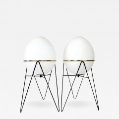Stilnovo stilnovo italian egg or uovo shaped glass floor lamps stilnovo stilnovo italian egg or uovo shaped glass floor lamps 477650 mozeypictures Images