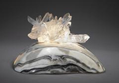 Studio Greytak Turtle Aragonite Shell Formed Lighted Sculpture - 2045522