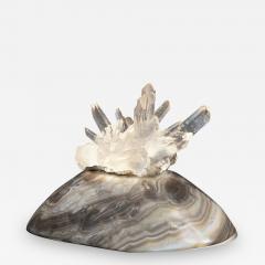 Studio Greytak Turtle Aragonite Shell Formed Lighted Sculpture - 2047609