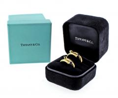 Tiffany and Co Tiffany Co Jean Schlumberger Cabochon Sapphire Single Coil Ring - 746943
