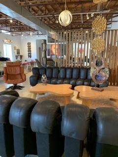 de Sede De Sede DS 600 Non Stop Tatzelwurm Sectional Sofa in Black Leather 22 Sections - 2115669