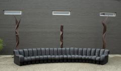 de Sede De Sede DS 600 Non Stop Tatzelwurm Sectional Sofa in Black Leather 22 Sections - 2115679