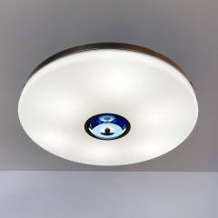 form A Iris Ceiling Light - 2022731