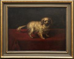 17TH CENTURY PAINTING OF A SMALL WHITE DOG - 1271840