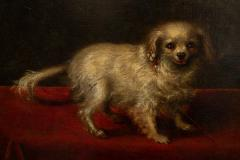 17TH CENTURY PAINTING OF A SMALL WHITE DOG - 1271841