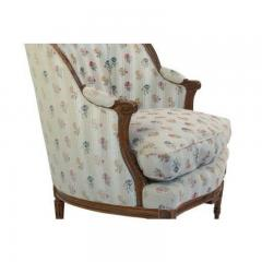 1880s French Fruitwood Louis XVI Style Bergere Chair - 1719793