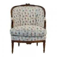 1880s French Fruitwood Louis XVI Style Bergere Chair - 1719799