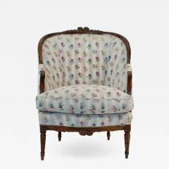 1880s French Fruitwood Louis XVI Style Bergere Chair - 1720072
