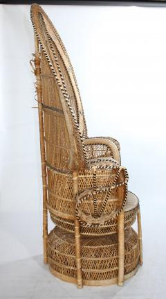 1970s Large Vintage Bohemian Emmanuelle Peacock Wicker Chair   529854