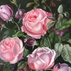 19th Century Danish Painter Pink Roses Unsigned - 1701916