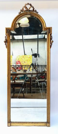 19th Century Tall Louis XVI Carved Giltwood Mirror - 1029432