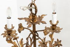 5 Stem Brass Chandelier - 1614838