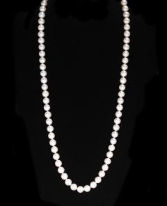 8 8 50MM PEARL NECKLACE - 2021790