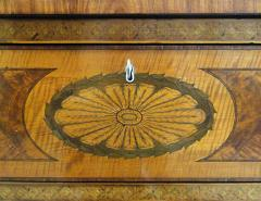 A Fine Edwardian Satinwood Secretaire Bookcase - 1023235