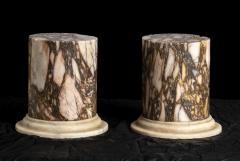 A Pair Of Sculpture Specimen Breccia Marble Pedestals Italian - 1903001