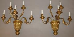 A Pair of Gilded Wood Sconces with Five Lights featuring acanthus leaves - 278109
