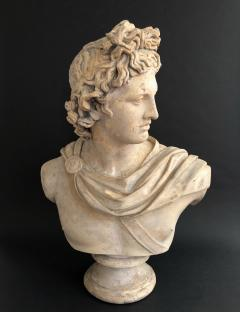 A Plaster Bust of Apollo Belvedere - 2104983