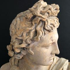 A Plaster Bust of Apollo Belvedere - 2104984