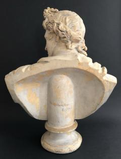 A Plaster Bust of Apollo Belvedere - 2104991