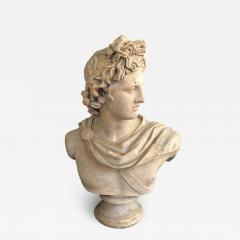 A Plaster Bust of Apollo Belvedere - 2109024