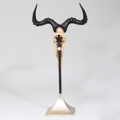 AFRICAN HUNTING TROPHY - 1911403