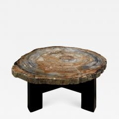Ado Chale Ado Chale Rare Fossilized Wood Top Coffee Table 1960s - 759163