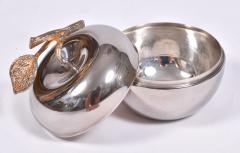 American 1960s silver apple - 1495497