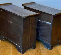 Antique Japanese Tansu Cabinets a Pair - 1999874