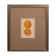Architectural Digest Fruit Print - 1095432