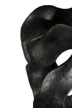BLACK SCULPTURE II - 1618477