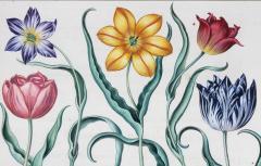 Basilius Besler Framed Hand Colored Engravings of Tulips by Basilius Besler a Pair - 1557720
