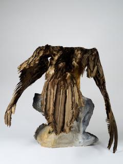 Bearded Vulture Gypaetus barbatus II A cites dd 09 03 2019 - 2041613