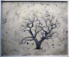 Bill Zima Sea Of Trees - 898228