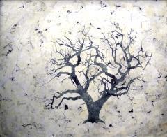 Bill Zima Sea Of Trees - 898229