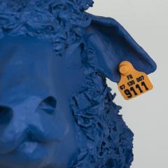 Blue Sheep Trophy Tondu FR9111 - 1730656