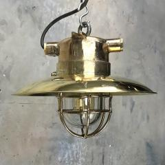 Brass Explosion Proof Cage Ceiling Pendant - 1007843