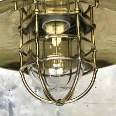 Brass Explosion Proof Cage Ceiling Pendant - 1007845