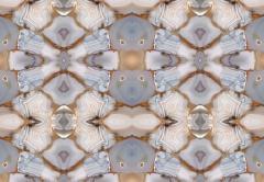 Brenda Houston Kaleidascopia - 2006751