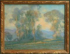 California Landscape - 1903084