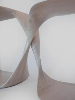 Carol Egan Sculptural Twist Console - 1154768
