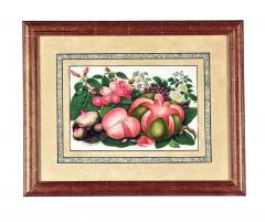 China Trade Watercolor and Gouache Set of Twelve Paintings of Fruit and Flowers - 1917116